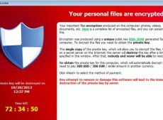 'Can I borrow your laptop' scam
