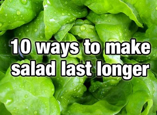 10 ways to make your salad last longer (7-10 days max)