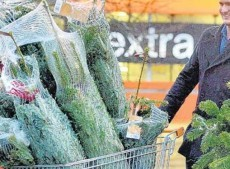 How to pay £1 or 1p for your Christmas Tree
